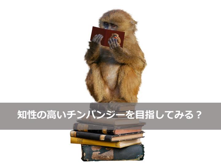 知性の高いチンパンジータイトル